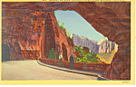 Gallery Zion National Park UT Postcard 1943