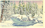 Winter Time in Vermont Postcard p18248