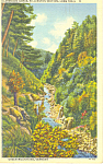 Clarendon Gorge, Long Trail, VT Postcard 1943