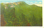 The Chin, Mt Mansfield, VT Postcard 1944