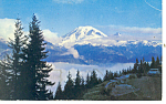 Mt Rainier, WA Postcard 1964