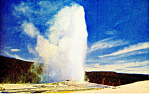Old Faithful Geyser Yellowstone National Park WY Postcard p18464