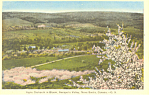 Apple Orchards, Nova Scotia,Canada Postcard