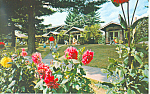 Cottages Word of Life Inn Schroon Lake NY Postcard p18593