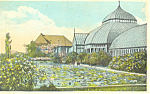 Click here to enlarge image and see more about item p18641: Lily Pond Schenley Park Pittsburgh PA Postcard p18641 1923