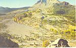 Devastated Area Lassen National Park CA Postcard p18654