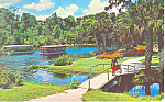 Gardens at Silver Springs Florida Postcard p18766