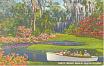Click here to enlarge image and see more about item p18855: Electric Boats, Cypress Gardens, Florida