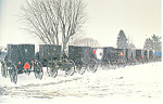 Amish Buggies in the Winter, Mt Hope, Ohio p18871