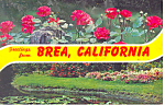 Click here to enlarge image and see more about item p19064: Greetings From Brea, California   Postcard 1979