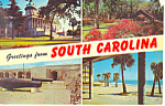 Greetings From South Carolina Postcard p19070