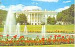 White House South Front, Washington DC Postcard