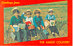 Amish School Boys,Pennsylvania Postcard p19183