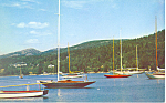Sailboats at Northeast Harbor  ME Postcard p19278