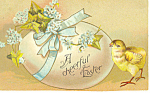 Click here to enlarge image and see more about item p19335: Easter, Postcard with Chick and Egg 1913