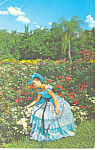 Beautiful Girls,Cypress Gardens, FL Postcard