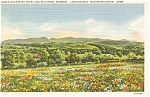 Lake Bomoseen VT Bird Mountain Postcard