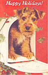 Happy Holidays Puppy in Mail Box Postcard p19510