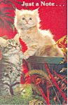 Click here to enlarge image and see more about item p19922: Cute Pair of Kittens Postcard p19922