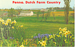 Amish Farm Scene Postcard p19996