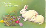 Easter Greetings Two Bunnies Postcard p21044