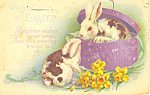 Wishes at Easter Postcard p21056
