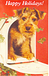 Happy Holidays Dog in Mail Box Postcard p21152