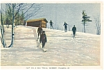 Cross Country Skiing Canadian Postcard