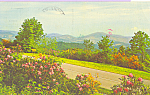 Click here to enlarge image and see more about item p21893: Blue Ridge Parkway at Mt Jefferson, North Carolina
