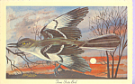 Click here to enlarge image and see more about item p22315: Texas State Bird Mockingbird p22315