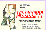 Click here to enlarge image and see more about item p22478: Magnolia, State Flower of Mississippi