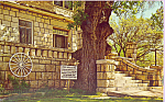 Click here to enlarge image and see more about item p22523: Post Office Oak Tree  Council Grove Kansas p22523