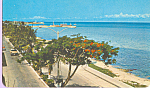 Click here to enlarge image and see more about item p22653: The Main Avenue Cozumel,Quintana Roo Mexico