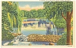 Battle Creek MI Irving Park Postcard