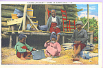 Click here to enlarge image and see more about item p23063: Taking Life Easy Down in Sunny Dixie Postcard p23063