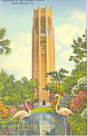 Click here to enlarge image and see more about item p23256: Flamingos at The Singing Tower , Lake Wales
