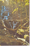 Click here to enlarge image and see more about item p23266: Dark Hollow Falls on the Hogcamp Branch of Rose River VA p23266