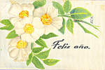 Click here to enlarge image and see more about item p23291: Feliz Ano Portuguese New Years Postcard p23291