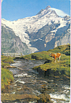 Click here to enlarge image and see more about item p23331: Grindelwald, Switzerland