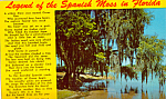 Click here to enlarge image and see more about item p23556: Legend of the Spanish Moss in Florida
