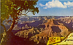 Click here to enlarge image and see more about item p23559: Grand Canyon National Park AZ p23559