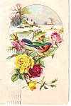 Bird on Flowers with a Snow Scene Postcard p23824