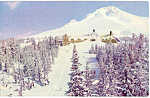 Timberline Lodge Oregon p23832