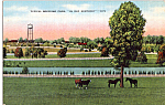 Breeding Farm Kentucky Postcard p23870