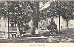 Click here to enlarge image and see more about item p23887: Grant Oak, Ironton, MIssouri