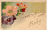 Click here to enlarge image and see more about item p23888: Greetings From Shelby Postcard p23888