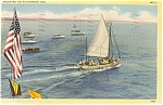 Afternoon Sail Sailboat Postcard p2407