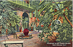 Click here to enlarge image and see more about item p24138: Courtyard in French Quarter New Orleans LA p24138