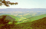 Click here to enlarge image and see more about item p24177: View of Shenandoah Valley and Massanutten Mountain