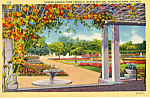 Click here to enlarge image and see more about item p24296: Sunken Garden From Pergola,Humboldt Park